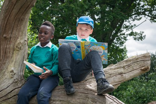 Boys_reading_tree2.jpg